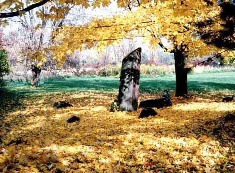 Ellis Hollow Stone Circle, Ithaca, New York
